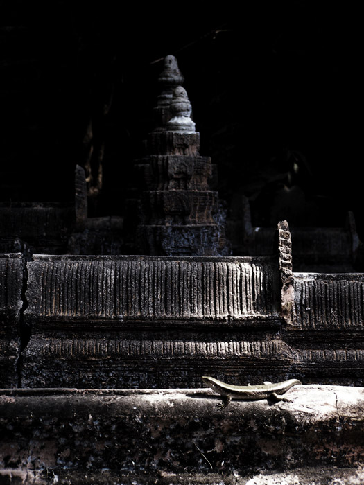 Lizard sunbathing on an Angkor Wat miniature sculpture