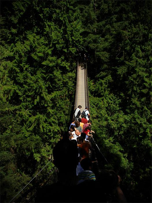Suspension bridge at Lynn Canyon on Vancouver's North Shore