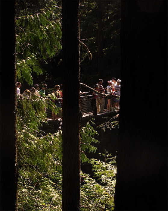Crowds on the suspension bridge at Lynn Canyon on Vancouver's North Shore
