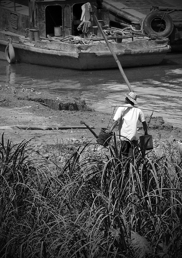 Farmer watering plants at the water's edge