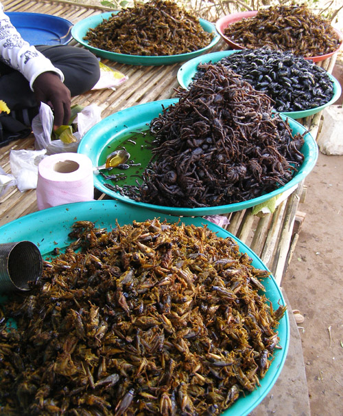 Deep-fried insects at a Cambodian bus stop